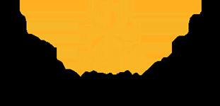 Theme Park Guides-logo